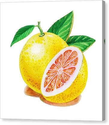 Ruby Red Grapefruit Canvas Print by Irina Sztukowski