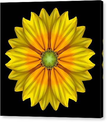Rudbeckia Prairie Sun I Flower Mandala Canvas Print by David J Bookbinder