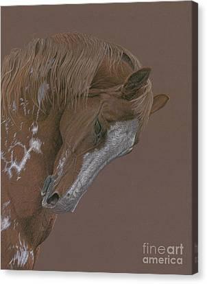 Rune Canvas Print by Laura Klassen