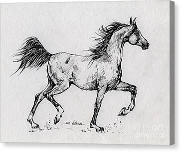Running Horses Canvas Print featuring the drawing Running Arabian Horse Drawing 1 by Angel  Tarantella