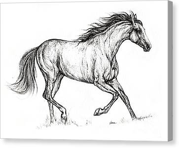 Running Horses Canvas Print featuring the drawing Running  Horse 08 10 2013 by Angel  Tarantella