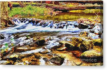 Running Stream In Yosemite National Park Canvas Print by Bob and Nadine Johnston