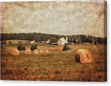 Rural America Canvas Print by Kim Hojnacki