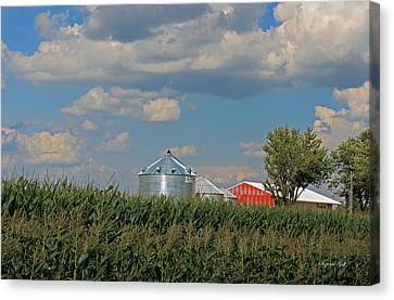 Rural Indiana Scene - Adams County Canvas Print by Suzanne Gaff