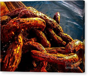 Rust Canvas Print by Robert Bales