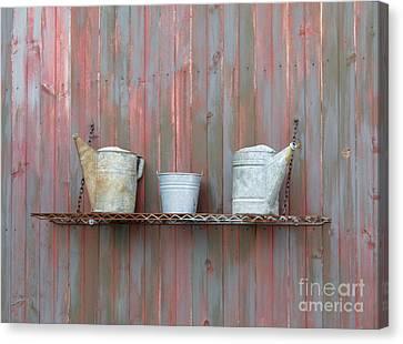 Rustic Garden Shelf Canvas Print by Ann Horn