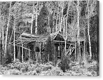 Rustic Rundown Rocky Mountain Cabin Bw Canvas Print by James BO  Insogna