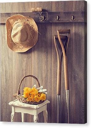 Rustic Shed Canvas Print by Amanda And Christopher Elwell