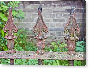 Rusty Fence Spikes Canvas Print by Tom Gowanlock