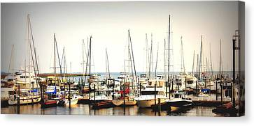 Safe Resting Place Canvas Print by Reid Callaway