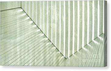 Sage Green Line Light Canvas Print by Marsha Heiken