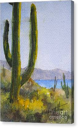 Saguaro Canvas Print by Mohamed Hirji