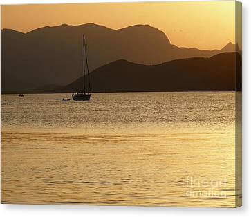 Sailboat At Sunset Canvas Print by Sophie Vigneault