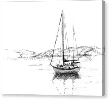 Sailboat Canvas Print by Sarah Parks