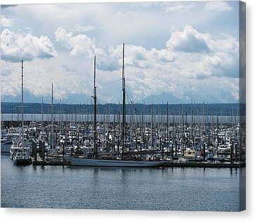 Sailboats In Seattle Canvas Print by Steven Parker