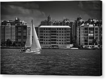 Sailing Away  Canvas Print by Mario Celzner