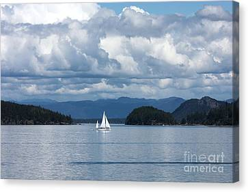 Sailing In The San Juans Canvas Print by Carol Groenen