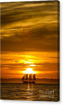 Sailing Yacht Schooner Pride Sunset Canvas Print by Dustin K Ryan
