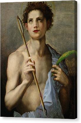 Saint Sebastian Holding Two Arrows And The Martyr's Palm Canvas Print by Andrea Del Sarto