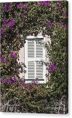 Saint Tropez Window Canvas Print by John Greim
