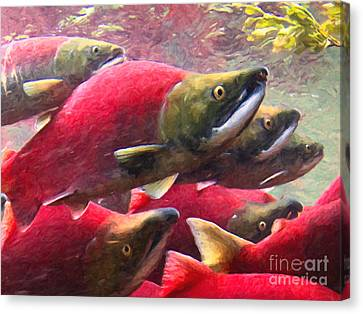 Salmon Run - Painterly Canvas Print by Wingsdomain Art and Photography