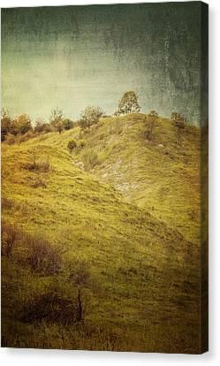 Salt Meadow Mounds Canvas Print by Mandy Tabatt