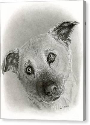 German Shepherd Mix- Sami Canvas Print by Sarah Batalka