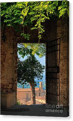 San Gimignano Door Canvas Print by Inge Johnsson