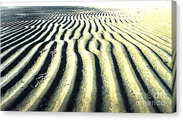 Sand Groove Canvas Print by Graham Foulkes