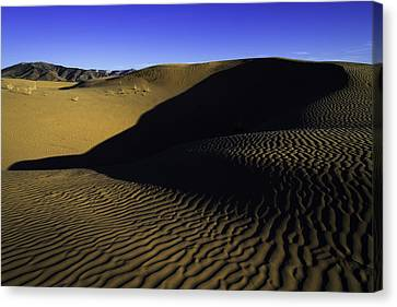 Sand Ripples Canvas Print by Chad Dutson