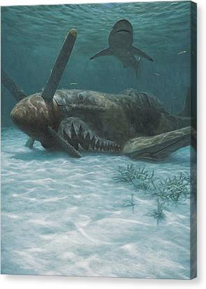 Sand Shark Canvas Print by Randall Scott