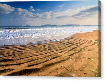 Sand Waves Canvas Print by Evgeni Dinev
