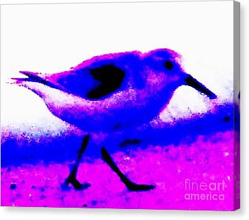 Sandpiper Abstract Canvas Print by Eric  Schiabor