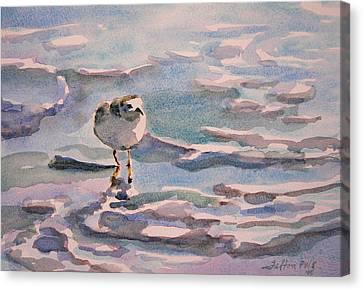 Sandpiper And Seafoam 3-8-15 Canvas Print by Julianne Felton