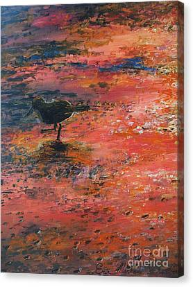 Sandpiper Cape May Canvas Print by Eric  Schiabor