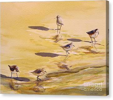 Sandpipers 5 Canvas Print by Julianne Felton