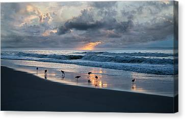 Sandpipers In Paradise Canvas Print by Betsy C Knapp