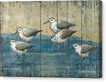 Sandpipers Oil Distressed Canvas Print by Paul Brent