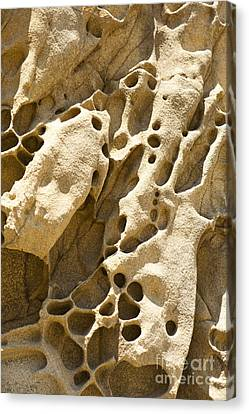 Sandstone Rock Formation Two At Big Sur  Canvas Print by Artist and Photographer Laura Wrede