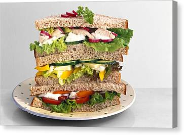 Sandwiches Canvas Print by Science Photo Library