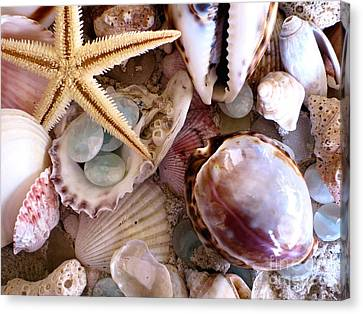 Sanibel Shells Canvas Print by Colleen Kammerer