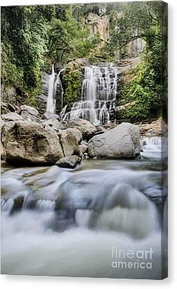 Santo Cristo Falls Canvas Print by Oscar Gutierrez