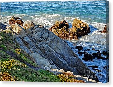 Sarcophagus Formation On Seaside Rocks Canvas Print by Susan Wiedmann