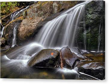 Sassy Waters Canvas Print by Debra and Dave Vanderlaan