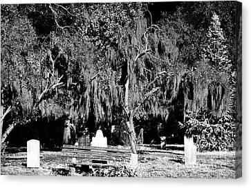 Savannah Resting Place Canvas Print by John Rizzuto