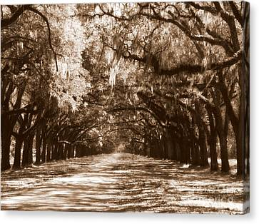 Savannah Sepia - The Old South Canvas Print by Carol Groenen