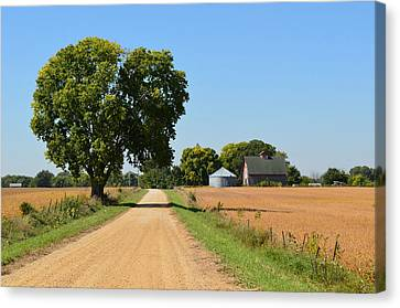 Scenic Journey Canvas Print by Tom Druin