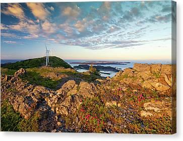 Scenic View Of Kodiak Island Canvas Print by Marion Owen
