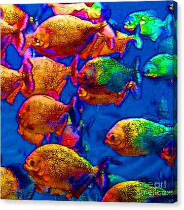 School Of Piranha V3 - Square Canvas Print by Wingsdomain Art and Photography
