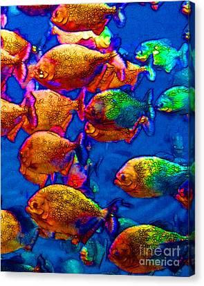 School Of Piranha V3 Canvas Print by Wingsdomain Art and Photography